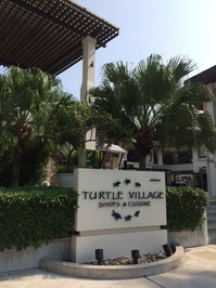 turtlevillage.JPG